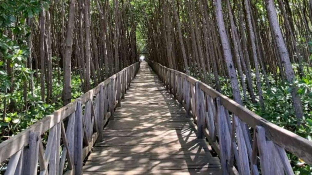 Tongke-tongke Destinasi Wisata Utama di Sinjai
